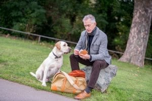David Evans of The Grey Fox Blog with his Labrador and 'blog dog' Harry